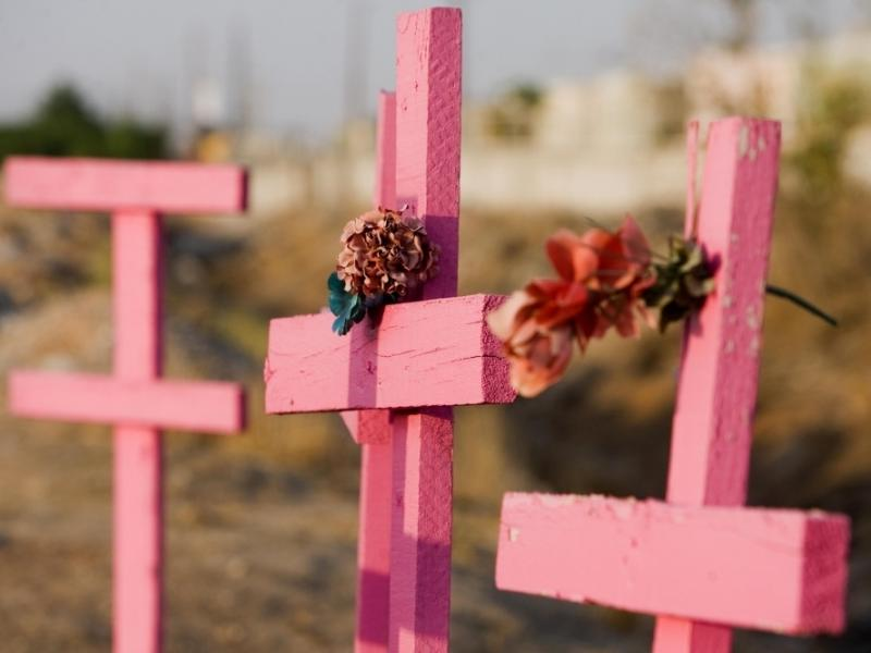 Pink wooden crosses are placed where the corpses of eight murdered women were found in Ciudad Juarez, Mexico