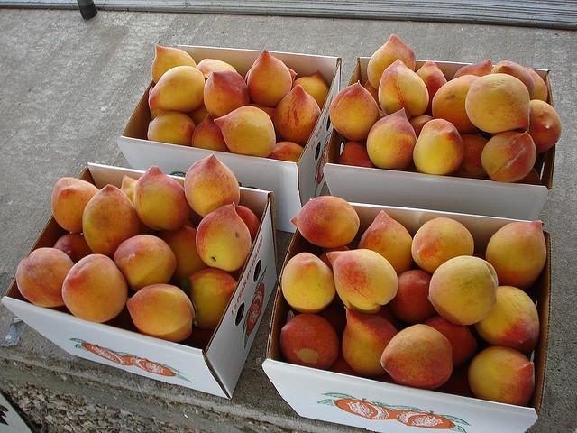 The cool winter may mean sweeter peaches this summer.