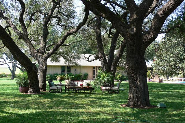 Texas homeowners could get tax relief if a bill on homestead exemptions becomes law.