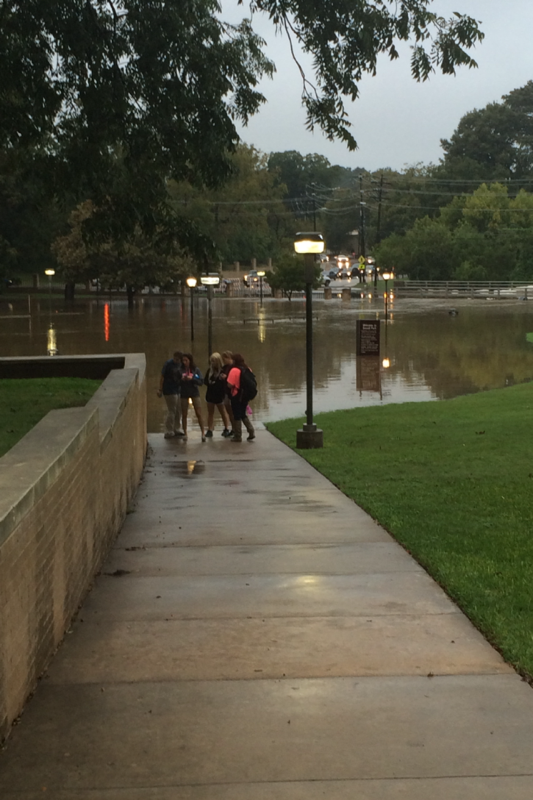 This photo was taken at Sewell Park in San Marcos - The river is about 10-15 feet higher than usual