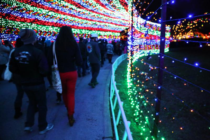 "Mayor Lee Leffingwell calls the Trail of Lights ""our true, Austin winter holiday celebration."""