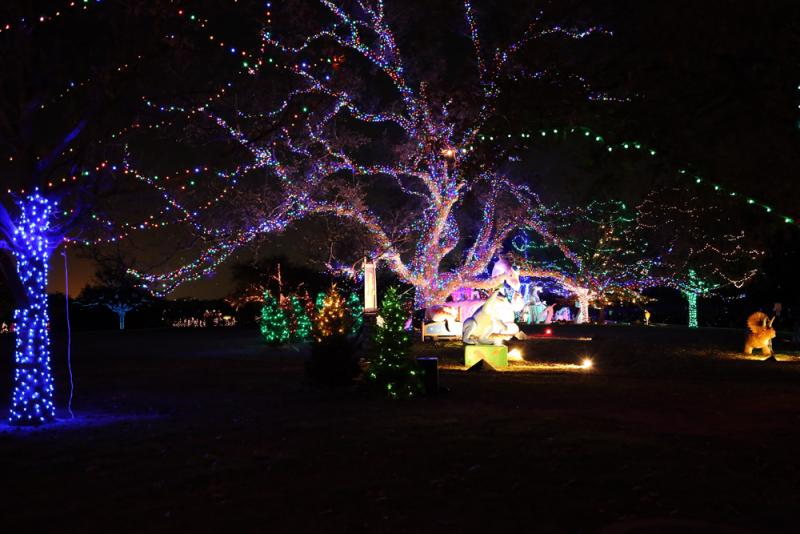 """Austin's Trail of Lights was launched as """"Yule Fest"""" in 1964; it was rebranded as the Trail of Lights in 1992."""