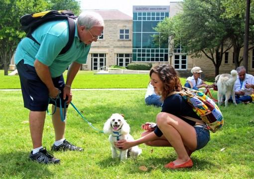 Therapy dogs visited Southwestern University during Spring 2013 finals to help students relax.