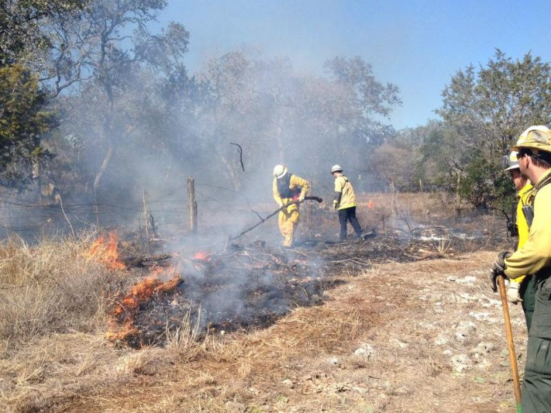Austin Water Utility conducts a prescribed burn to restore native grasses. One such burn is scheduled today.