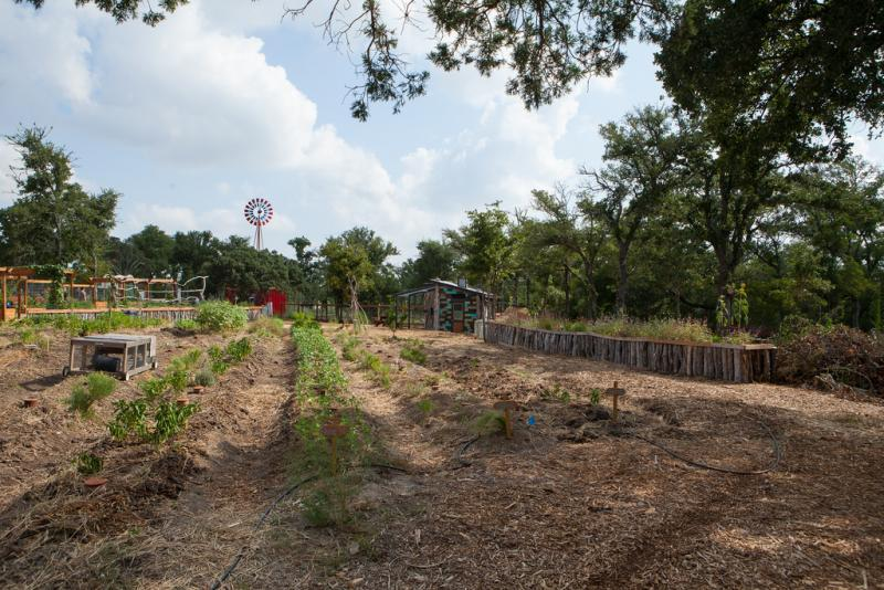 The Community First village has a community garden already in place where residents can grow fresh produce.