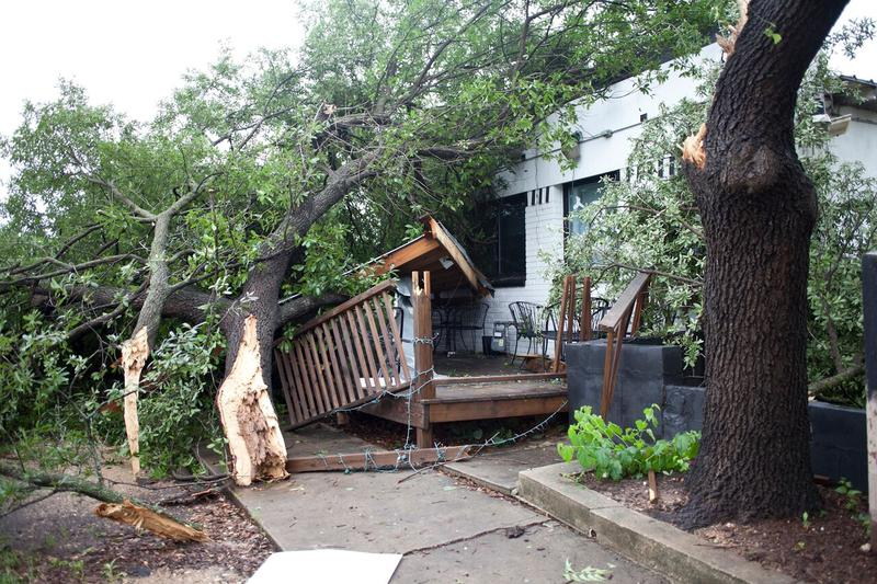 Downed and damaged trees, property in Central Austin