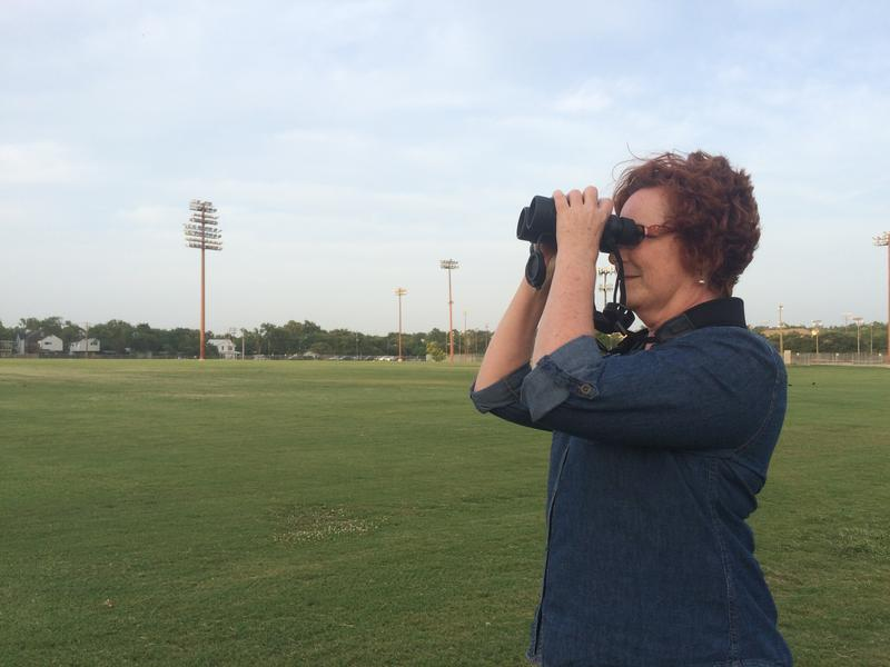 Janet Reed of Travis Audubon at the Whitaker Intramural Fields in Central Austin, home to hundreds of monk parakeets. Reed says plans to move the birds in order to refurbish the fields may not work.