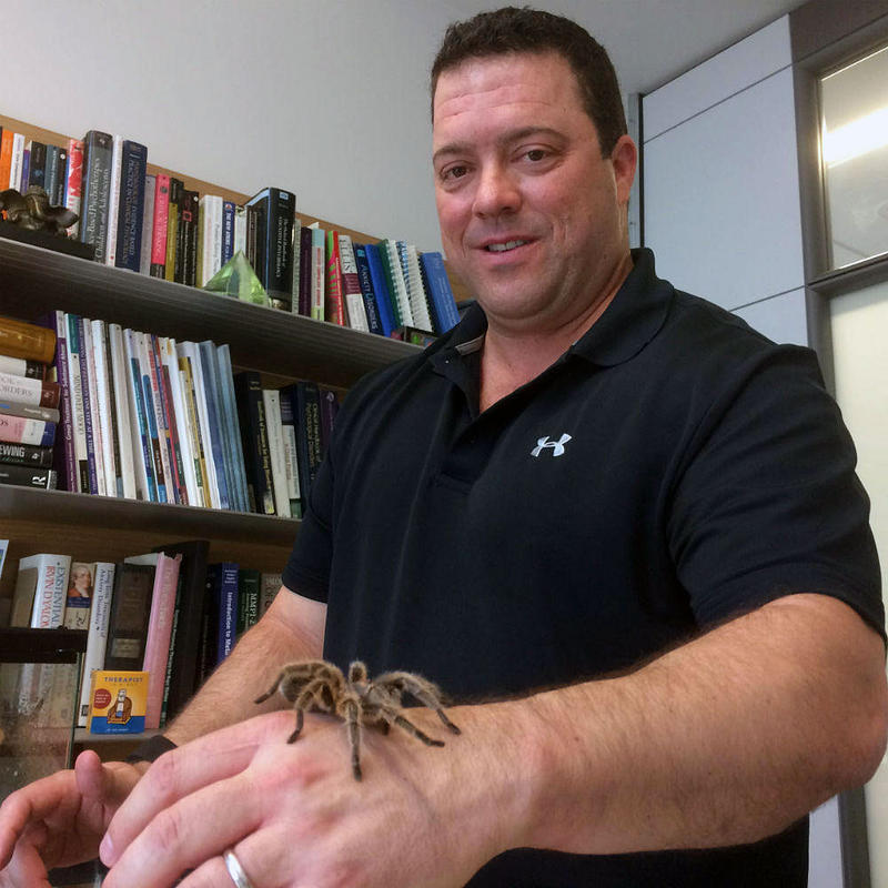 UT Associate Professor Mark Powers and Benji, the rose hair tarantula that helps him demonstrate how to treat anxiety.