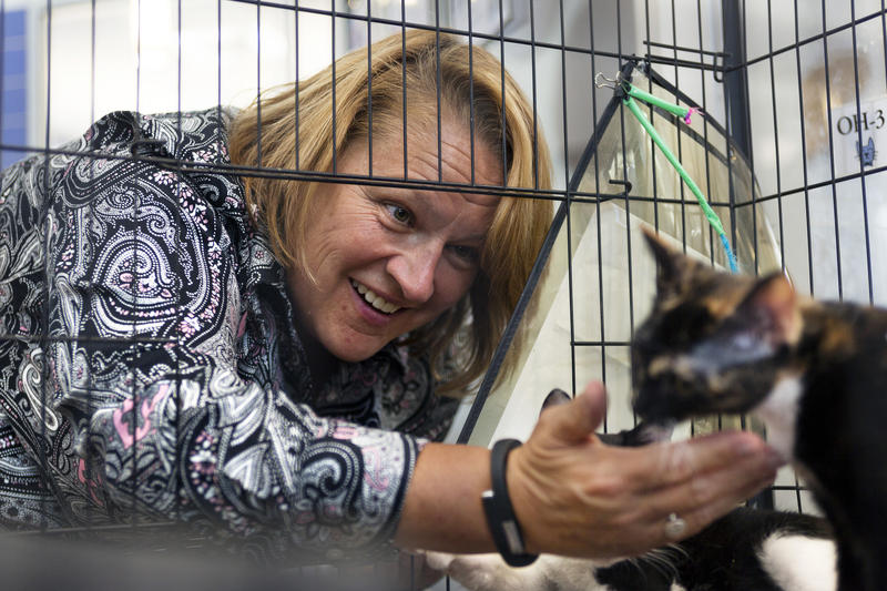 Tawny Hammond is Austin's new Chief Animal Services Officer.