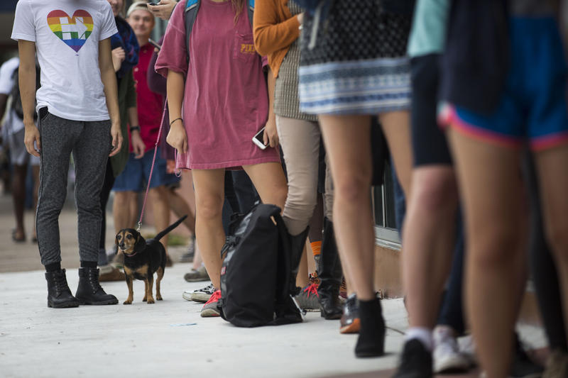 People line up outside of the University Co-op in Austin to vote last November. State law requires high schools to hand out voter registration applications to eligible students twice a school year.