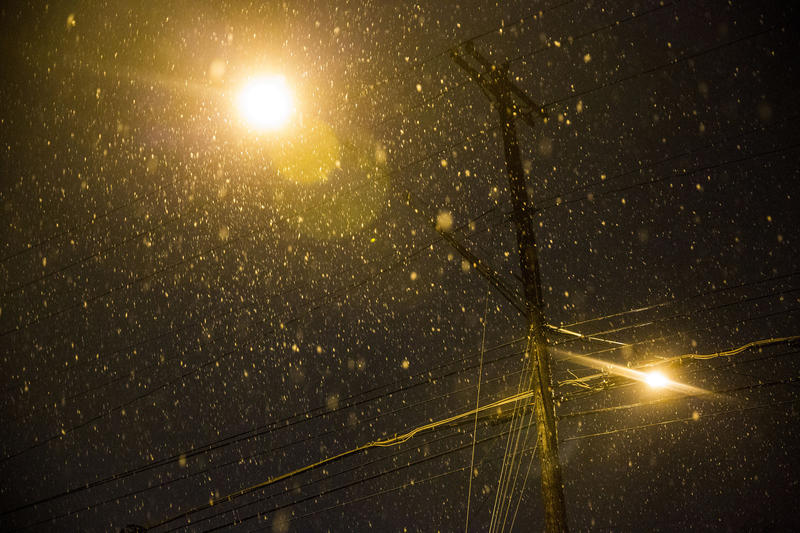 Snow falls in the Travis Heights neighborhood of South Austin on Dec. 7.