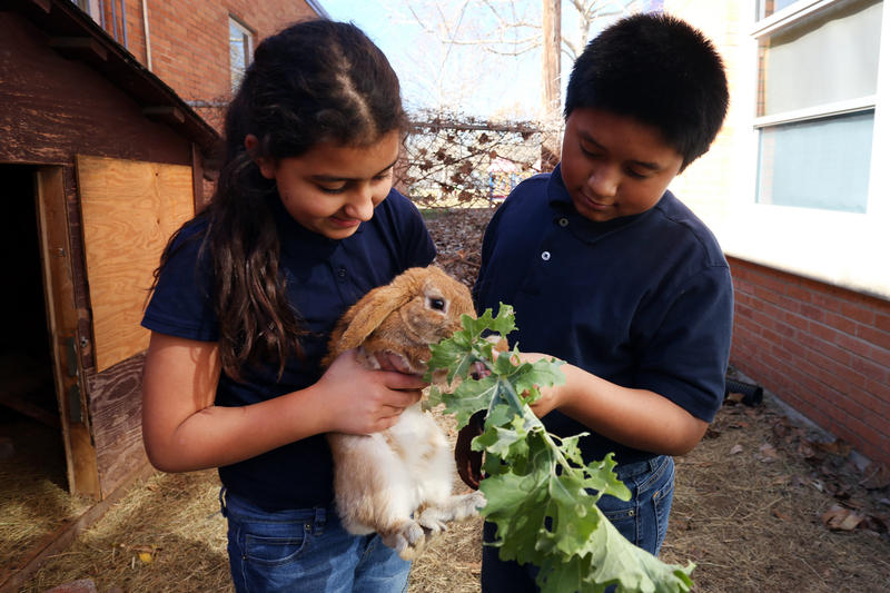 Fifth-graders Saja and Trystan share some kale with the campus bunny at Brooke Elementary School in East Austin on Tuesday.