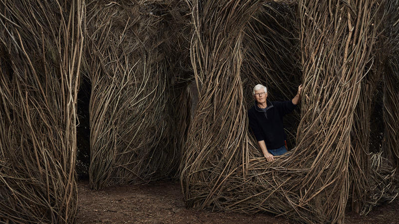 "Artist Patrick Dougherty creates large-scale sculptures by bending and weaving sticks. This latest ""Stickwork"" piece is in Pease Park."