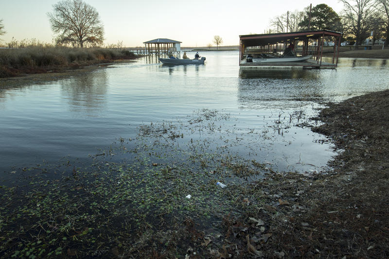 Lake Fork, Texas, where high school fishing teams get as much attention as varsity football.