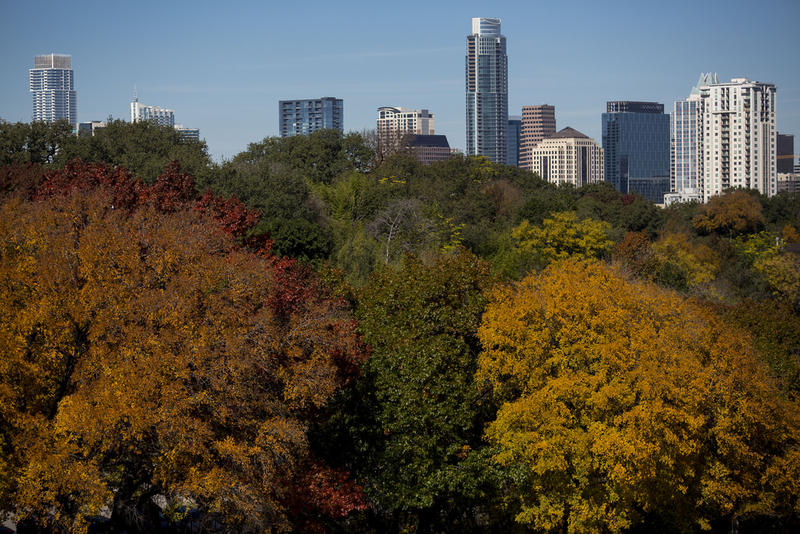 The downtown Austin skyline and fall foliage colors.