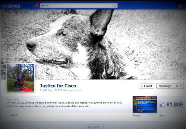 National attention continues to focus on the APD shooting of Cisco, a pet blue heeler.