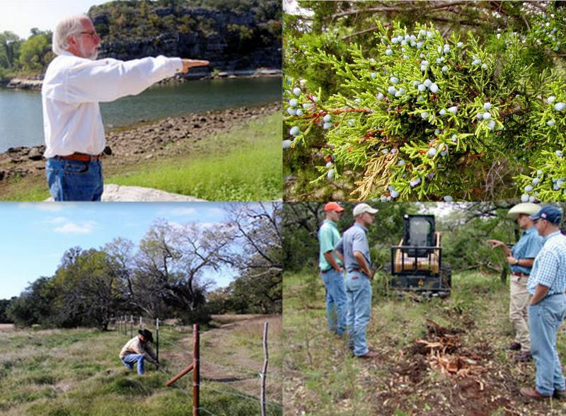 Landowners can use matching funding for several types of projects under the Creekside Conservation Program.