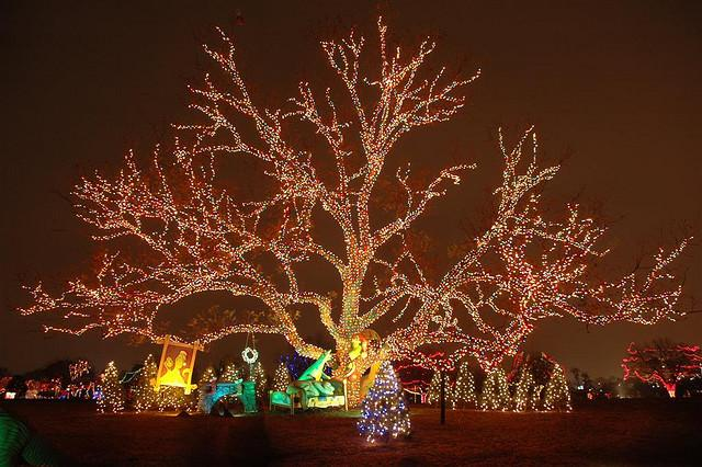 The Trail of Lights is due to return this December.