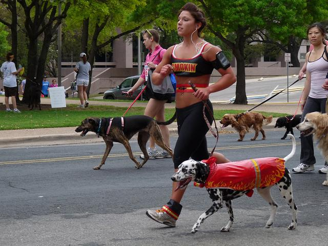 A participant and her pal in last year's Texas Dog Walk.