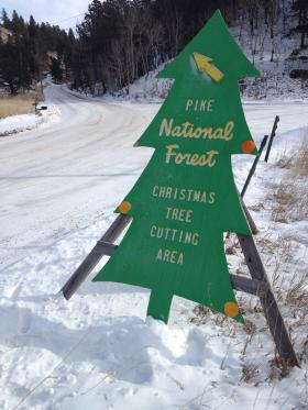 A Pike National Forest sign directs visitors to an ideal tree hunting spot