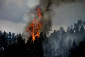 The 2012 Waldo Canyon Fire, which destroyed 346 home, was one of Colorado's most destructive wildfires.