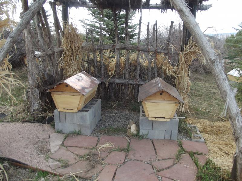Caren's hives are constructed with five sides, mimicking the shape of the cells.