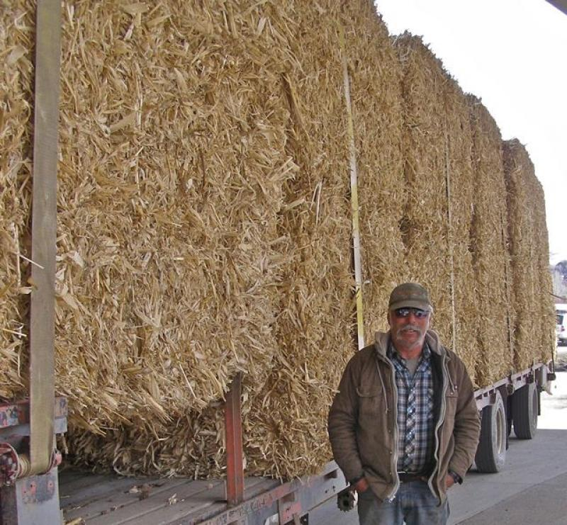 Judd Rodman stands by his cornstalk bales