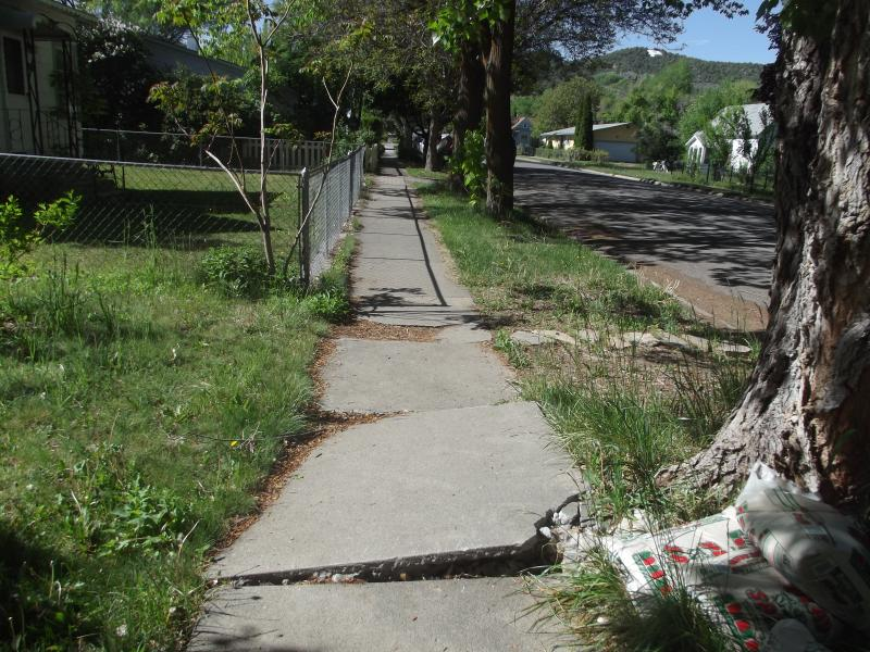 "Sidewalks all over town have ""cliffs"" -- mostly due to cottonwood tree roots."
