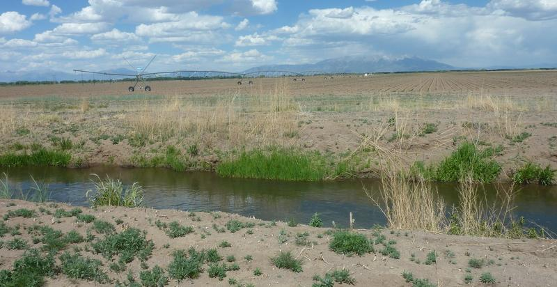 One of the irrigation ditches on Shriver's farm.  The ditches run dry by the end of May, which means Shriver relies solely on the aquifer for irrigation water for most of the Summer.