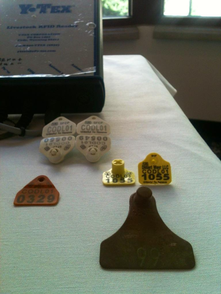 Different styles and shapes of ear tags