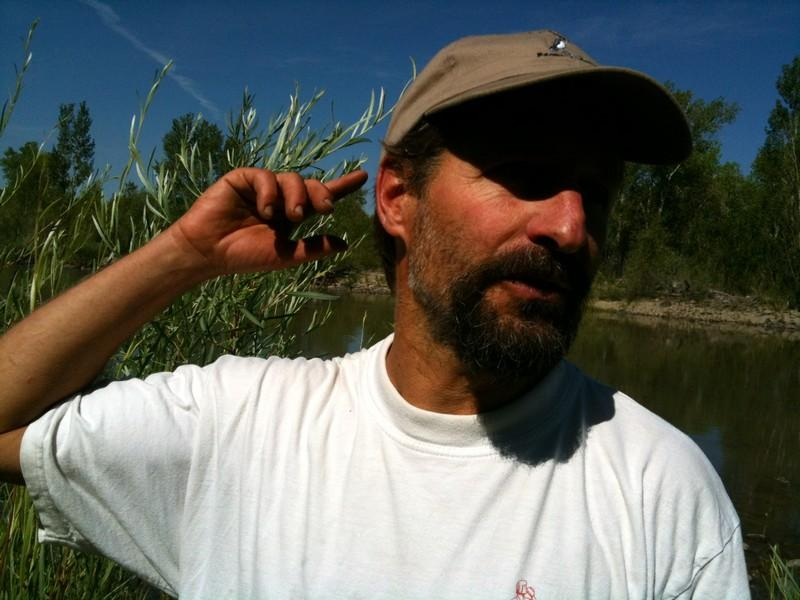 Jason Beason of the Rocky Mountain Bird Observatory
