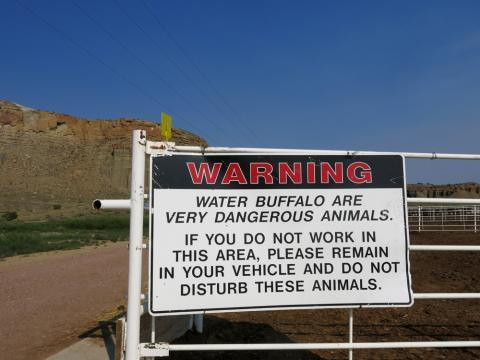 A sign warns inmates to stay away from the water buffalo pens.