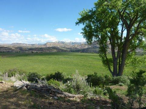 Carver Ranch in Mesa County was bought in the 1970s by Ute Water District for its water rights.