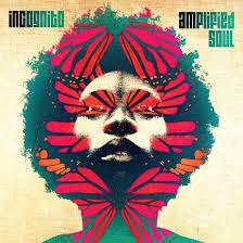 Incognito / Amplified Soul / Shanachie