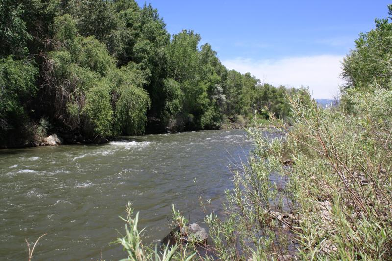 North Fork of the Gunnison River, Colorado River