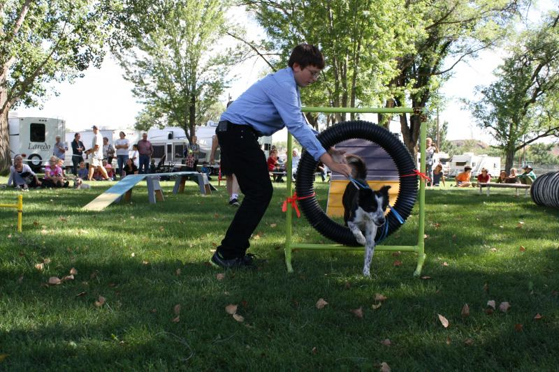 Damon Hudson, 13, guides his Border Collie Lily through the obstacle course.