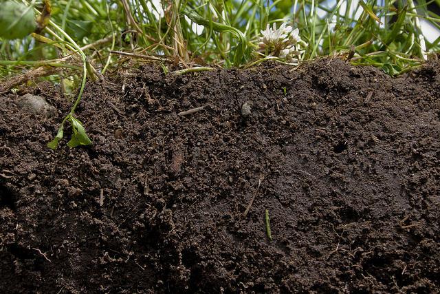soil, dirt