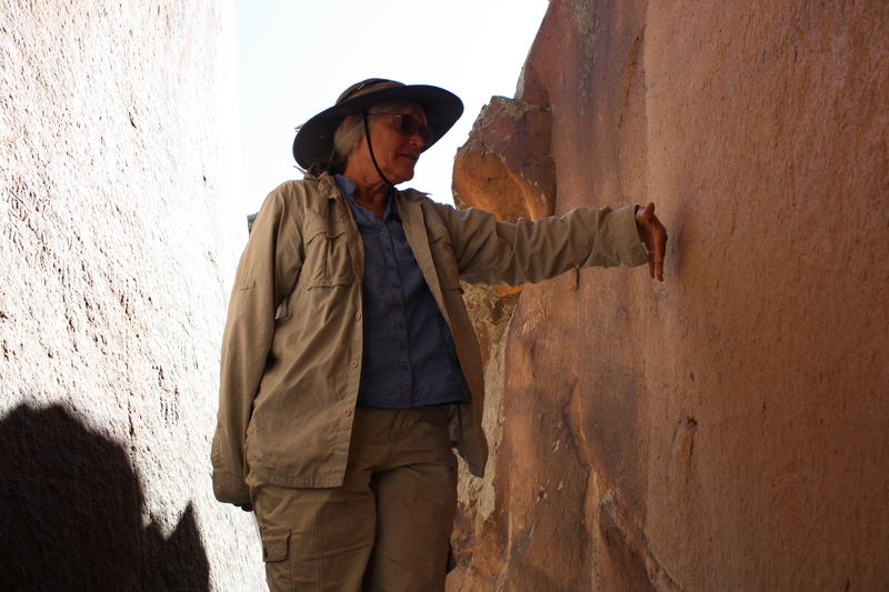 Archaeologist Carol Patterson