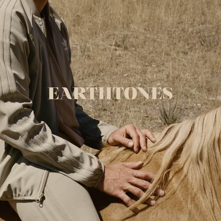 Bahamas / EarthTones / BrushFire