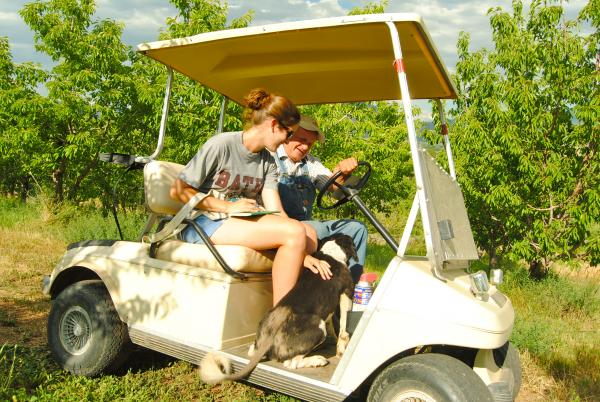 Allie Goldstein and Glenn Austin pet the Austin family dog while riding around the orchard via golf cart