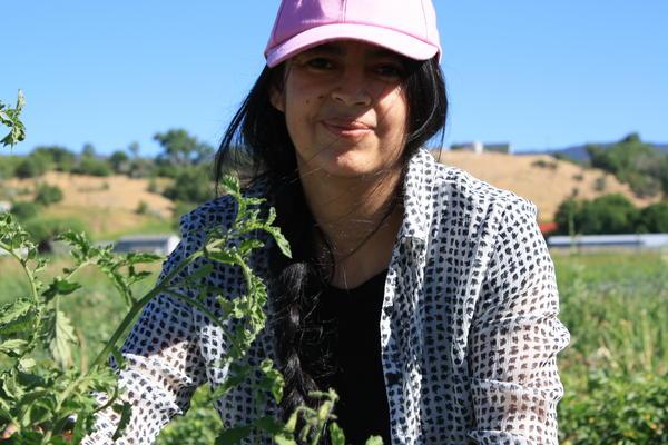 Gardening, farming