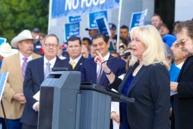 Asm. Connie Conway shares her thoughts on water, the state budget and more.