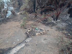 Authorities say this illegal campfire near the San Joaquin River is the cause of the French Fire.