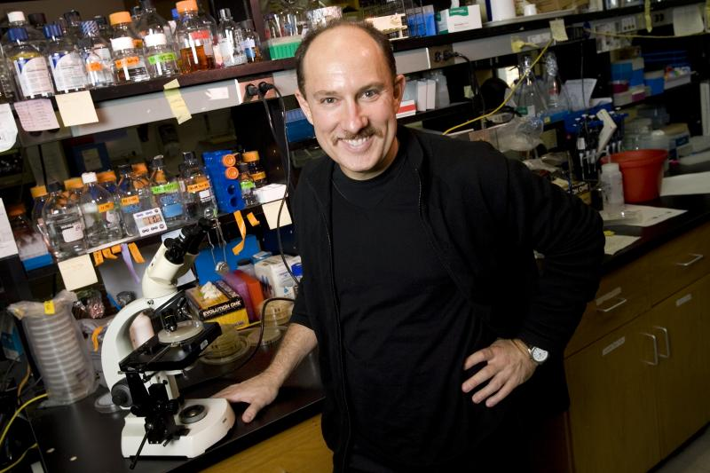 Dr. Joseph Heitman, James B. Duke Professor and Chair of the Department of Molecular Genetics and Microbiology, in his lab at Duke University Medical Center in 2006.