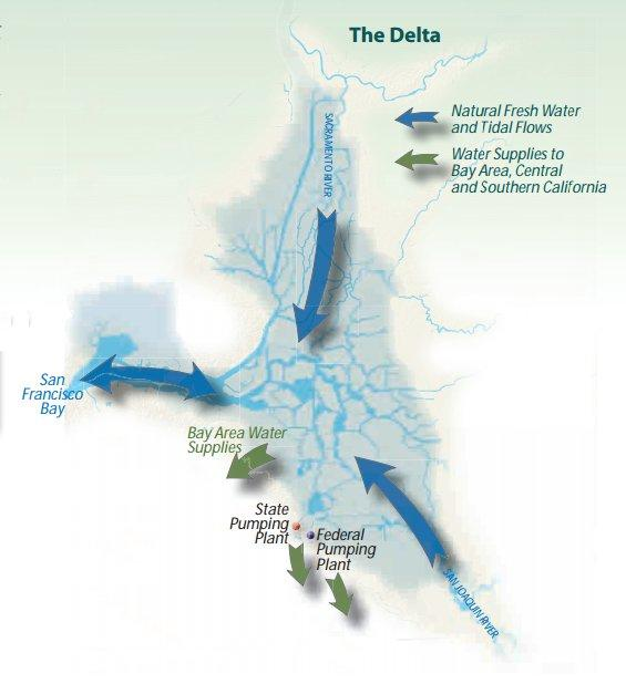 A map shows the flow of water in the Sacramento-San Joaquin Delta