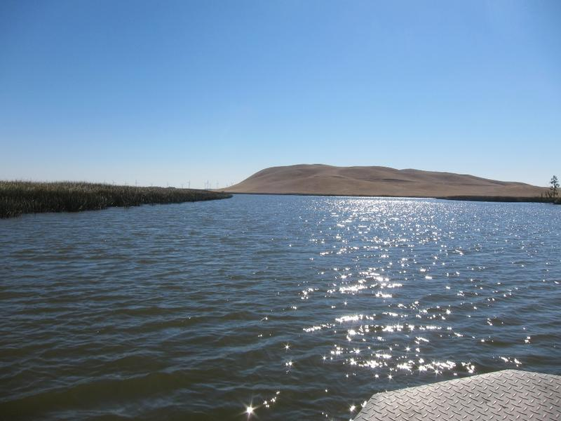 out on a boat on Montezuma Slough in the Suisun Marsh.
