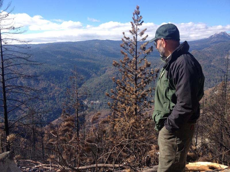 Ramiro Rojas looks over where the Aspen Fire burnt in the Sierra National Forest In August 2013.