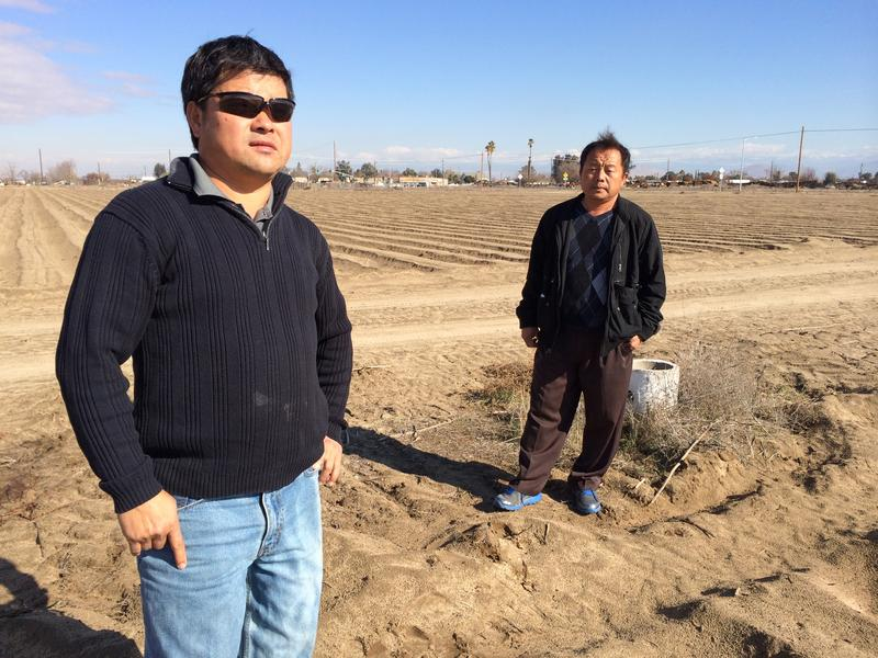 Chia Lee and his brother, Teng Lee, are concerned about the drought's impact on their Parlier farm.