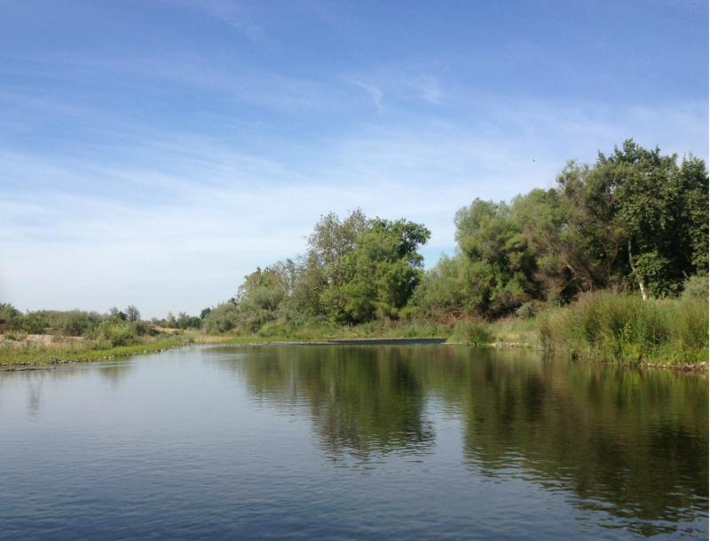 The San Joaquin River separates Fresno and Madera Counties.