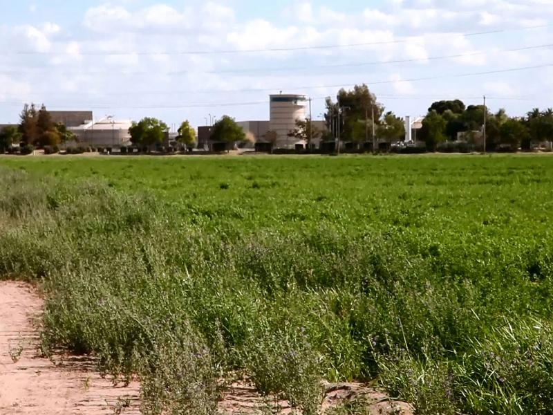 Jim Quist's farm sits on the other side of the road from the Fresno-Clovis Regional Wastewater Reclamation Facility